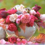 華やかなお正月生花アレンジメント・お正月寄せ植え・盆栽特集!実家や大切な人へのお歳暮にも