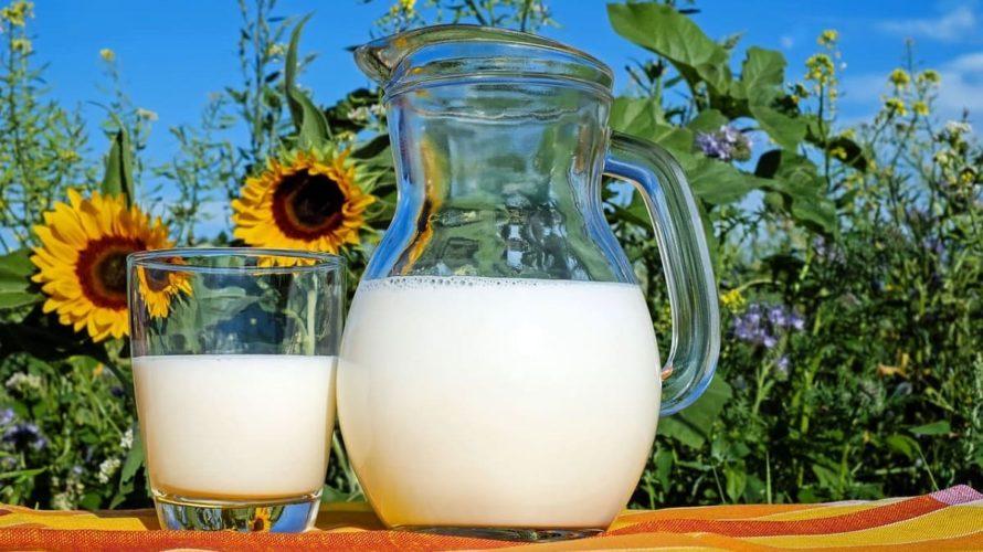 花畑牧場の北海道プレミアム牛乳が発売されています!どこで買えるの?どんな味?乳脂肪分が3.7%以上になりました