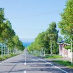 【ふるさと納税】北海道八雲町より八雲ハンバーグセット140g×15個(2.1kg)が届きました!