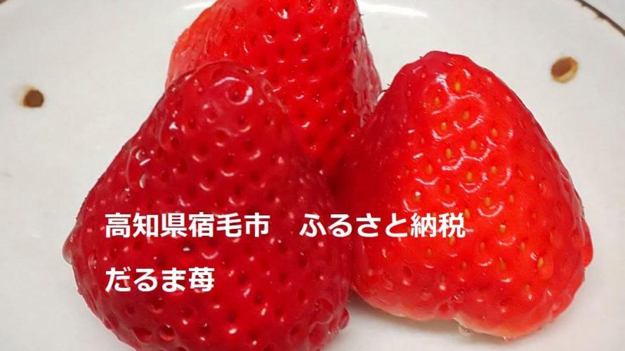 【ふるさと納税】高知県宿毛市より「だるま苺(さがほのか)4パック」が届きました!