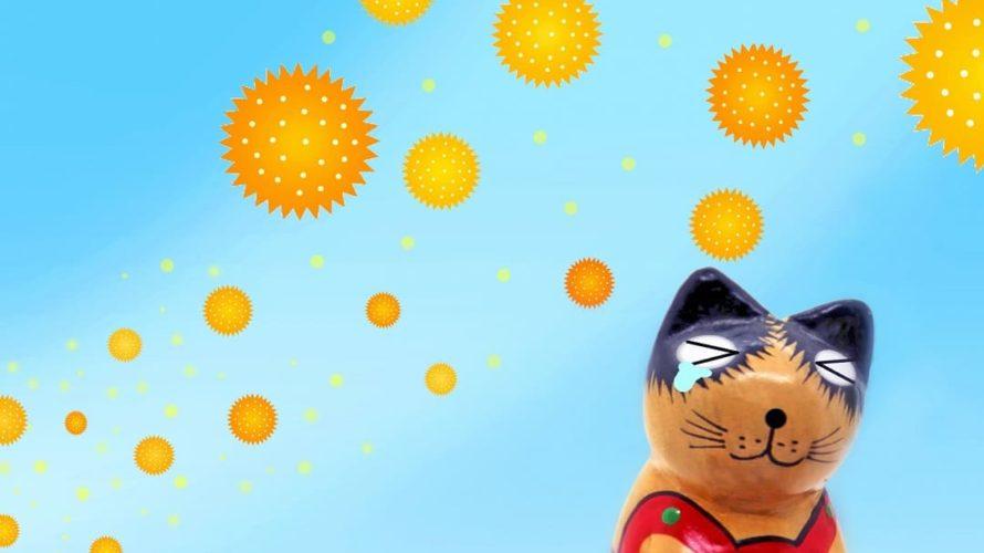 「アレルブロック花粉ガードスプレー ママ&キッズ」で子供の花粉対策!実際に使ってみました
