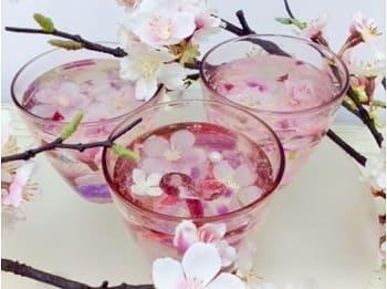 桜のクリスタルジェリー作り