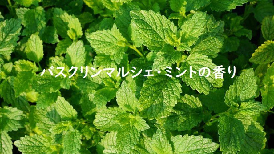 【レビュー】バスクリンマルシェ・ミントの香りは自然由来の原料のみ使用で爽やかな香りを楽しめます
