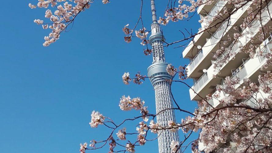 東京スカイツリーから徒歩10分以内で行ける大横川親水公園は子連れにおすすめ!ローラーすべり台などの遊具もあるよ