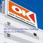 【レビュー】OK(オーケー)ストアでPayPayを使ってみました!3%割引と20%還元で超お得に!