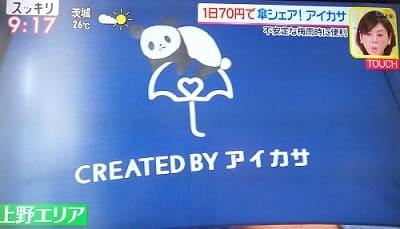 アイカサ 上野パンダ