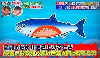 白い鮭を使う鮭ぶし