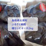 【ふるさと納税】鳥取県北栄町より「種なしピオーネ2kg(4房)」が届きました!
