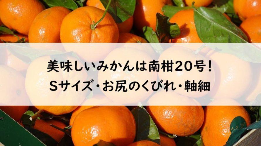 【温州みかん】「南柑(なんかん)20号」は柑橘ソムリエが選んだ一番おいしいみかん